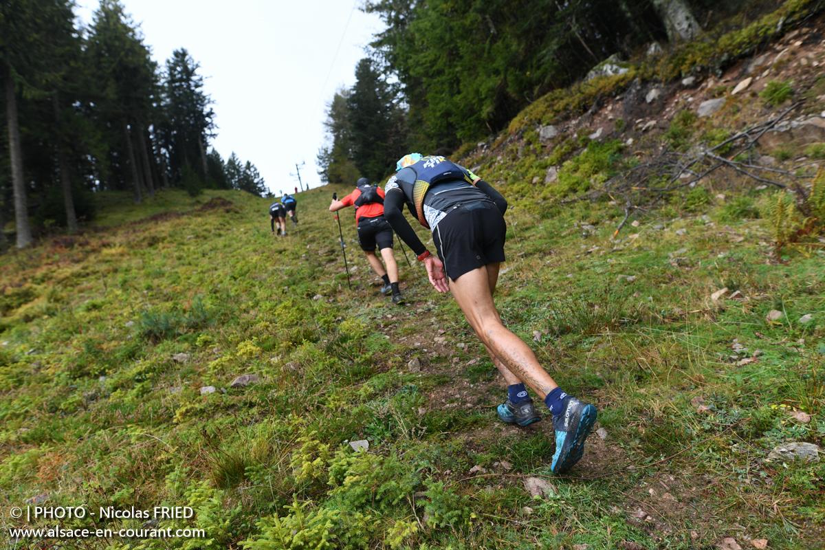 L'Alsace en courant | Trails et Courses en Montagne d'Alsace et du